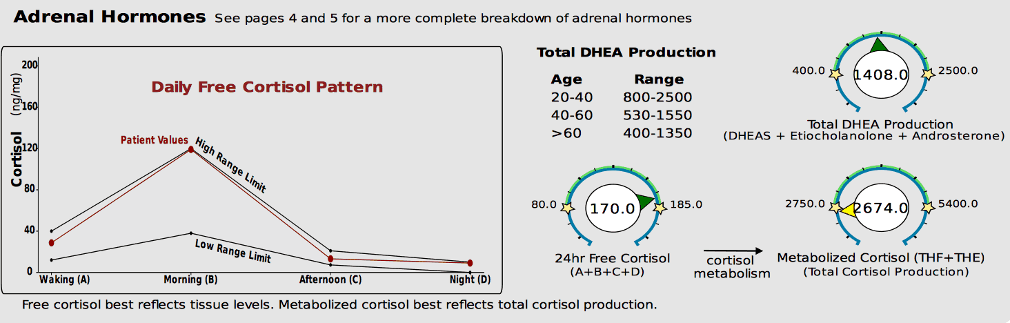 High free cortisol and low total cortisol on the DUTCH test