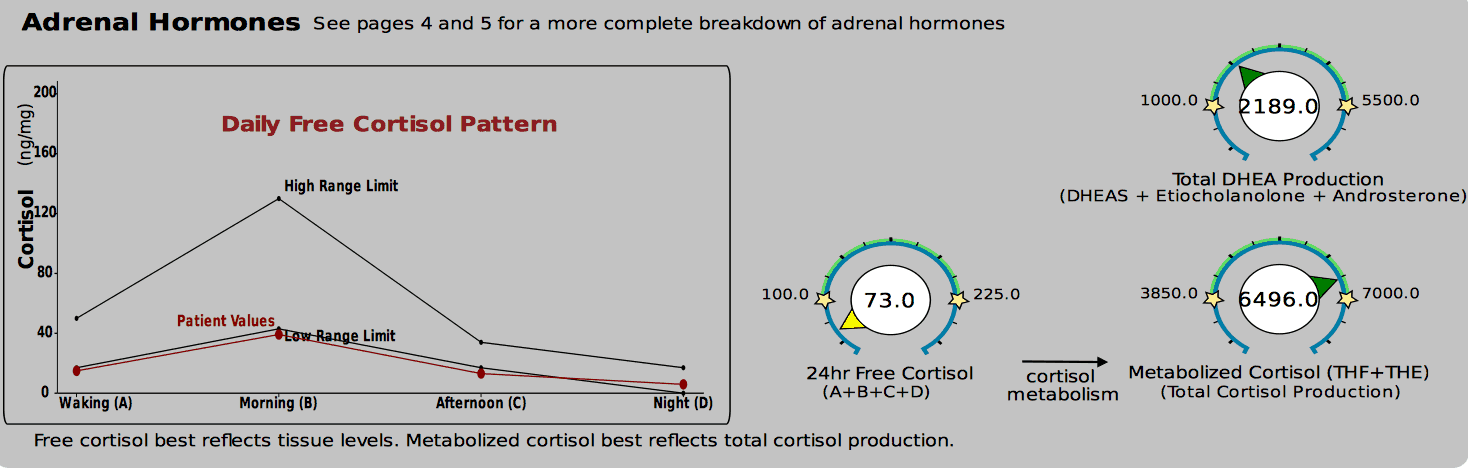 DUTCH test showing low free cortisol, but high total cortisol production