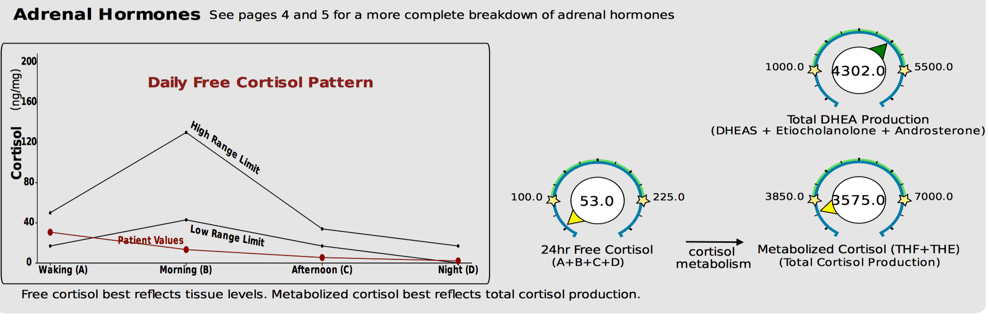 DUTCH test showing low free cortisol and low total cortisol