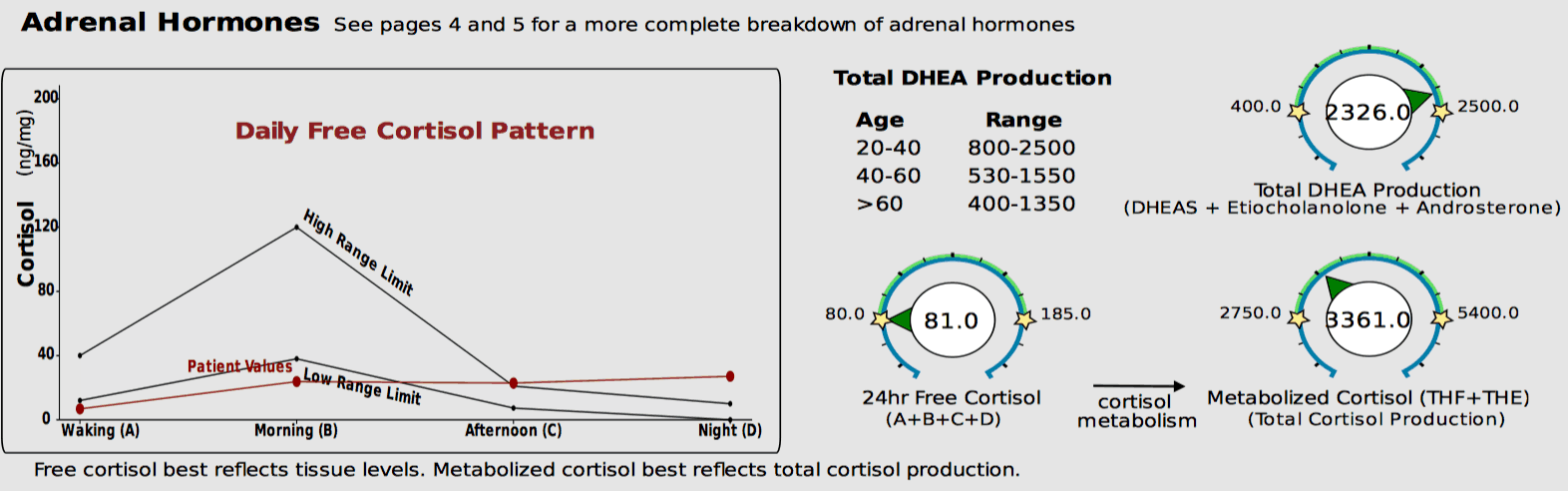 Disrupted cortisol rhythm