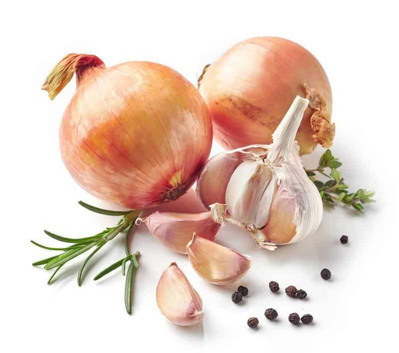 Onion and Garlic FODMAP triggers