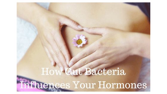 Gut bacteria and your hormones