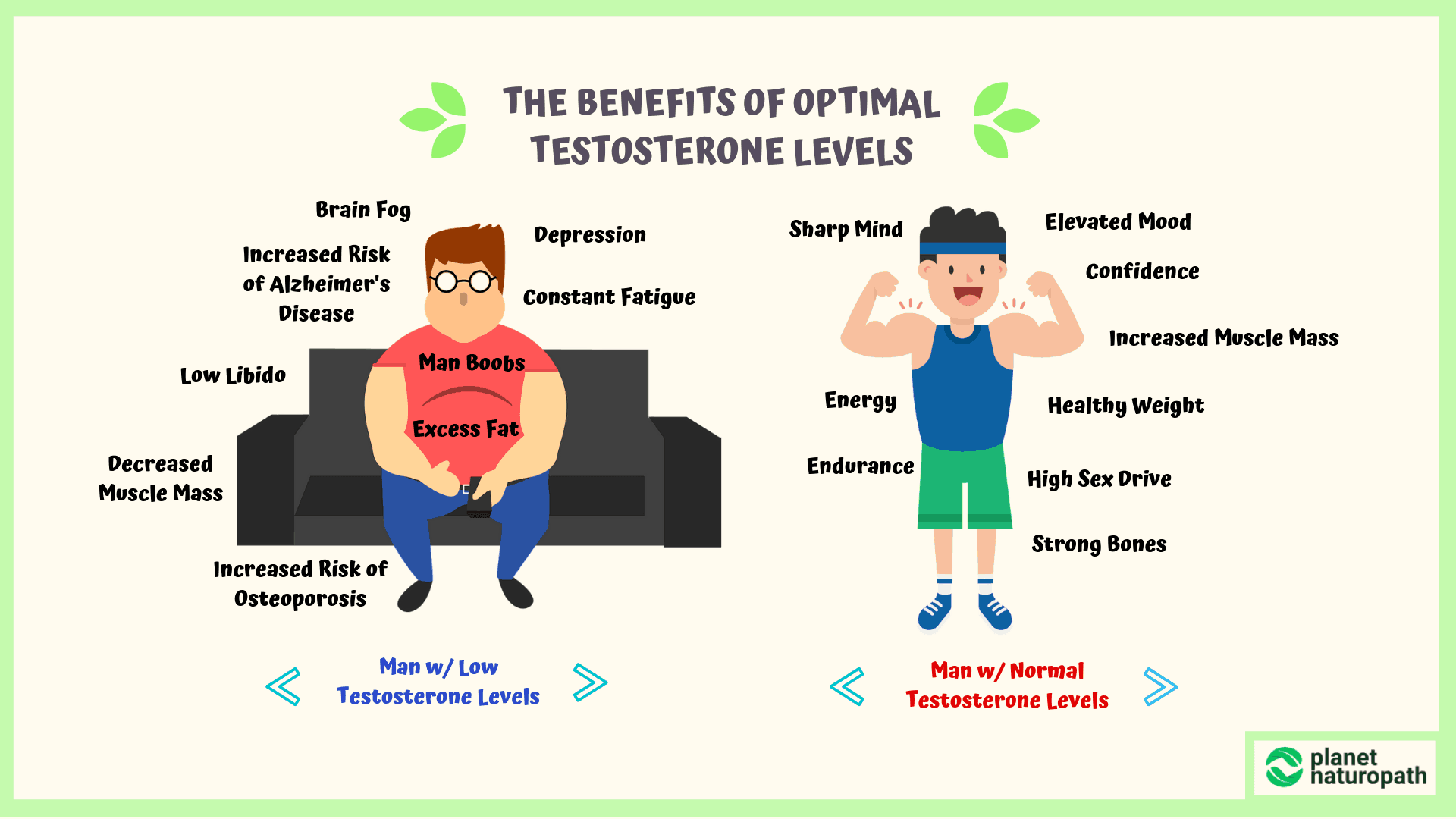 benefits-of-optimal-testosterone-levels