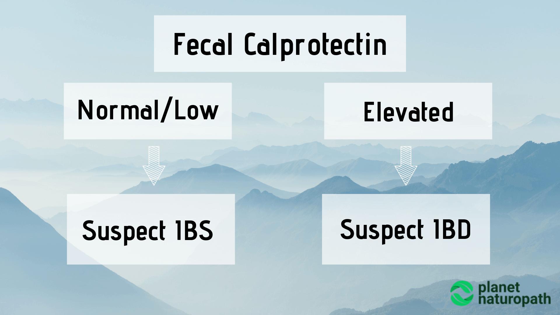 Fecal-Calprotectin