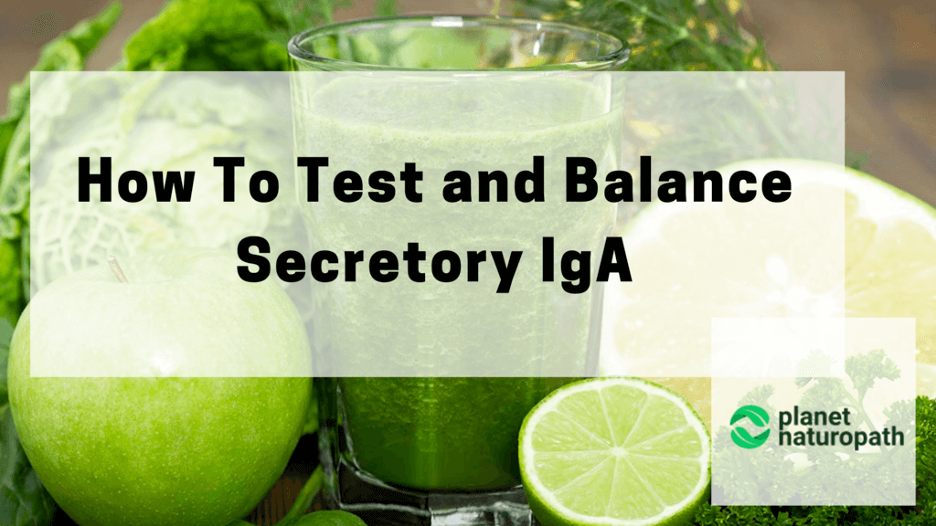 How-To-Test-and-Balance-Secretory-IgA
