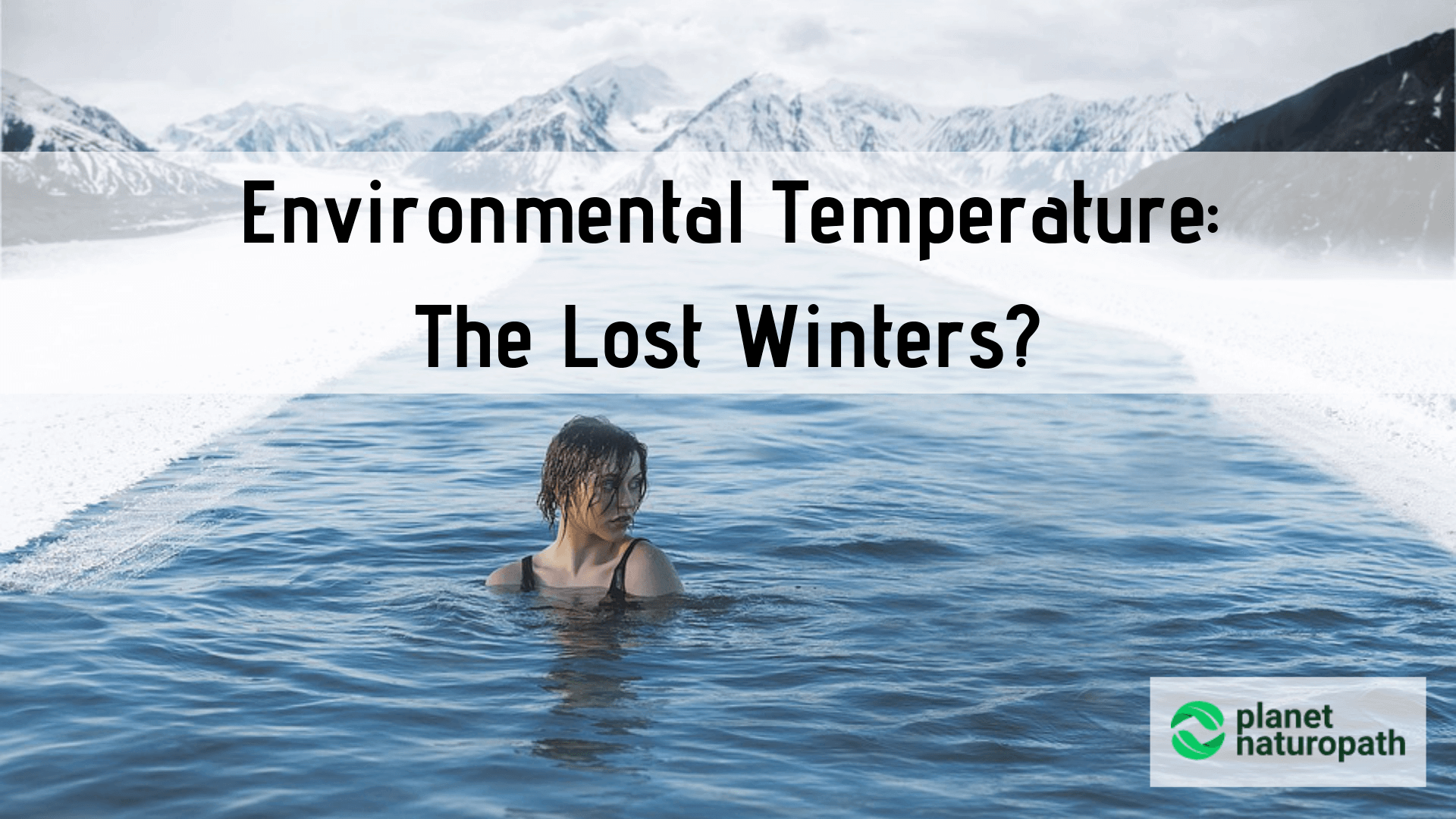 Environmental-Temperature-The-Lost-Winters
