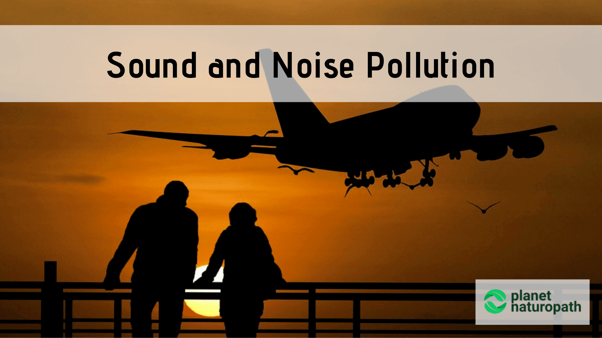 Sound-and-Noise-Pollution