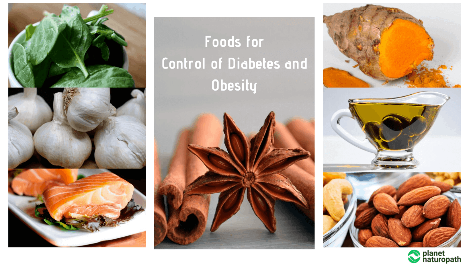 Foods-for-Control-of-Diabetes-and-Obesity
