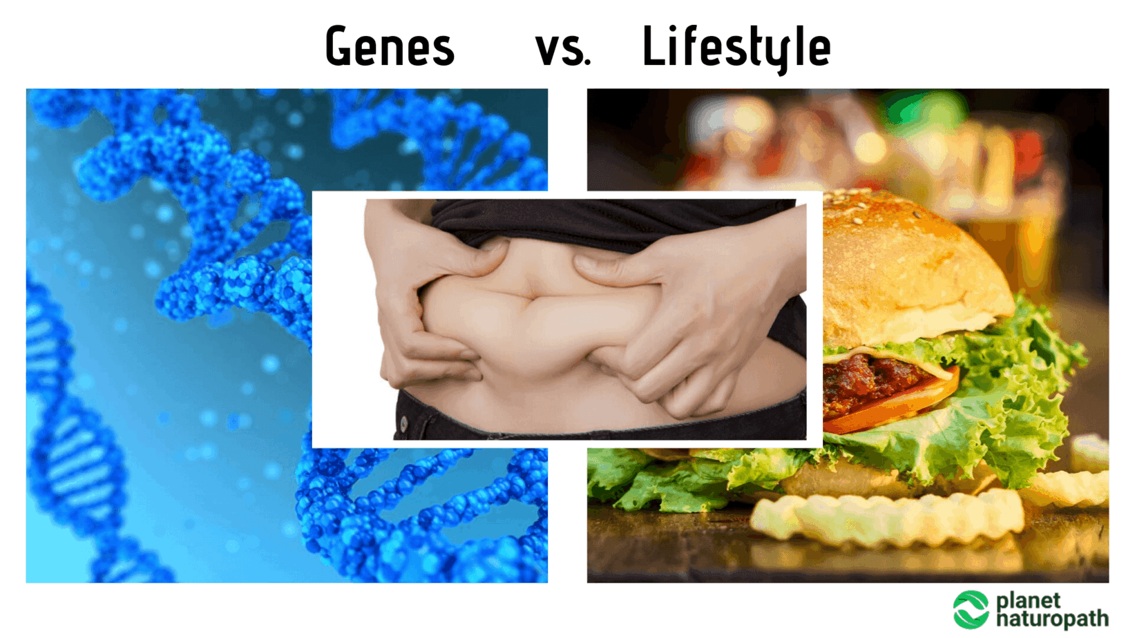 Genes-vs.-Lifestyle