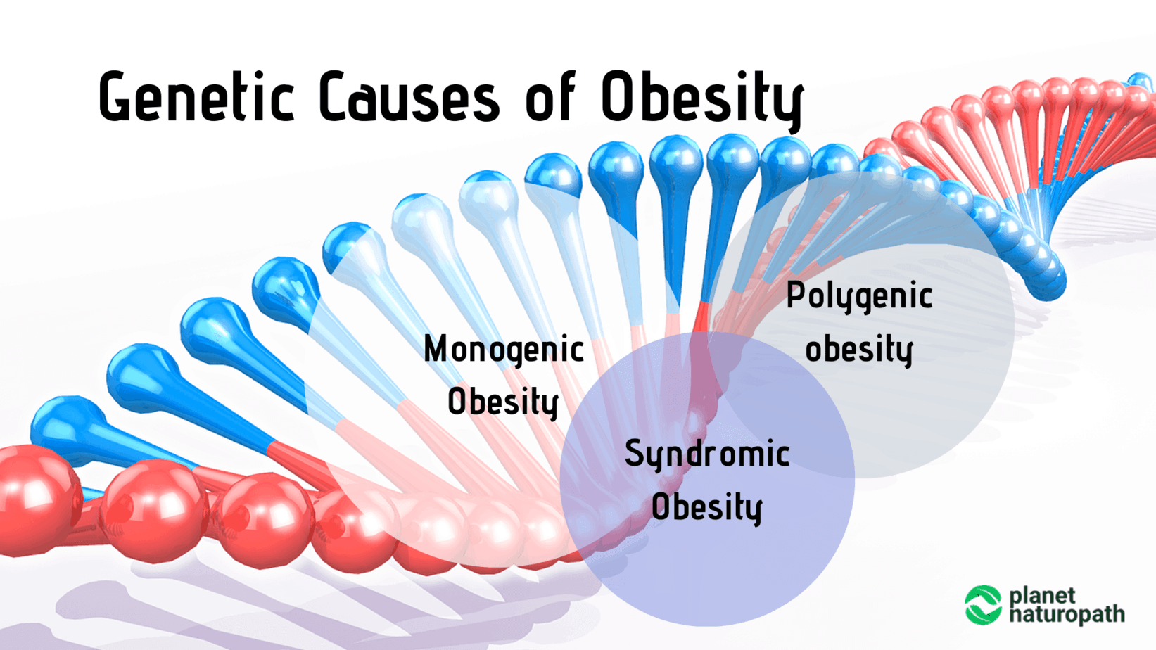 Genetic-Causes-of-Obesity