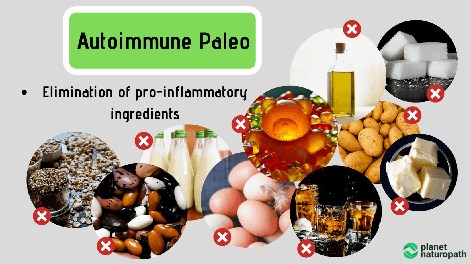 Autoimmune-Paleo
