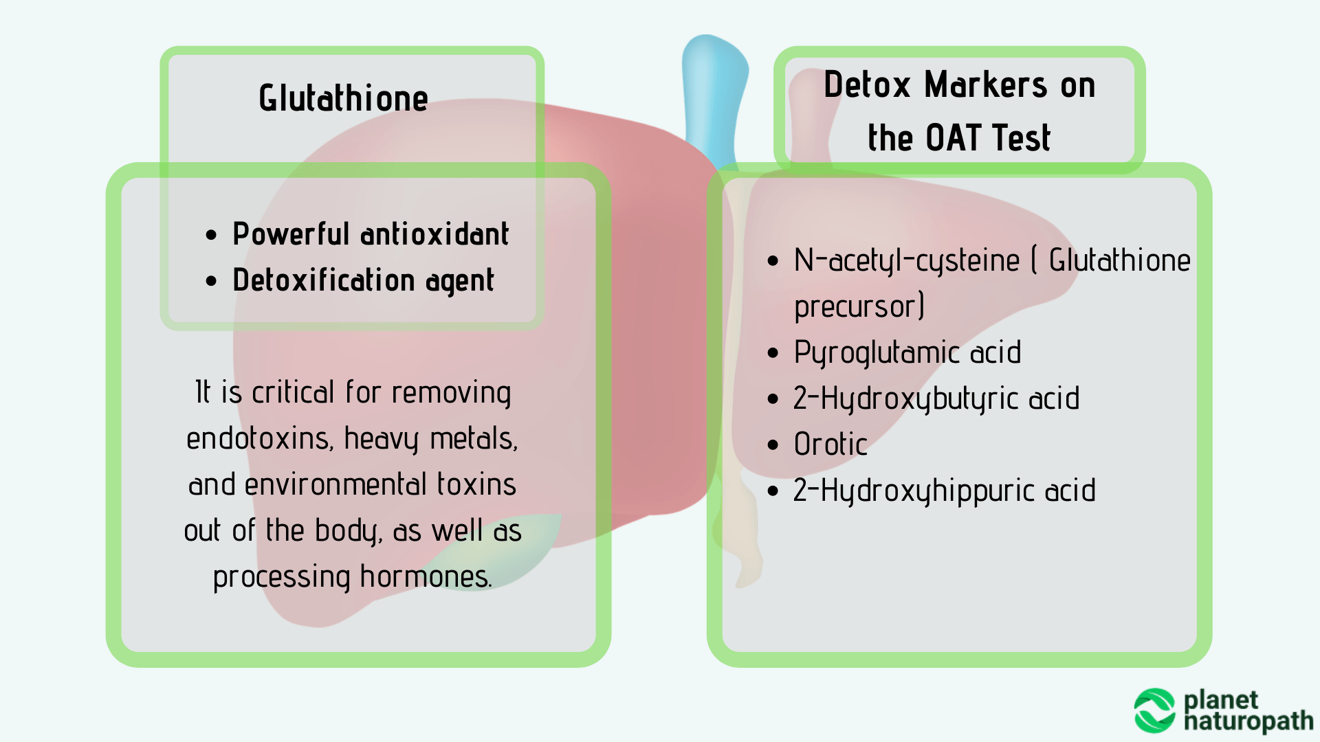 Detox-Markers-on-the-OAT-Test