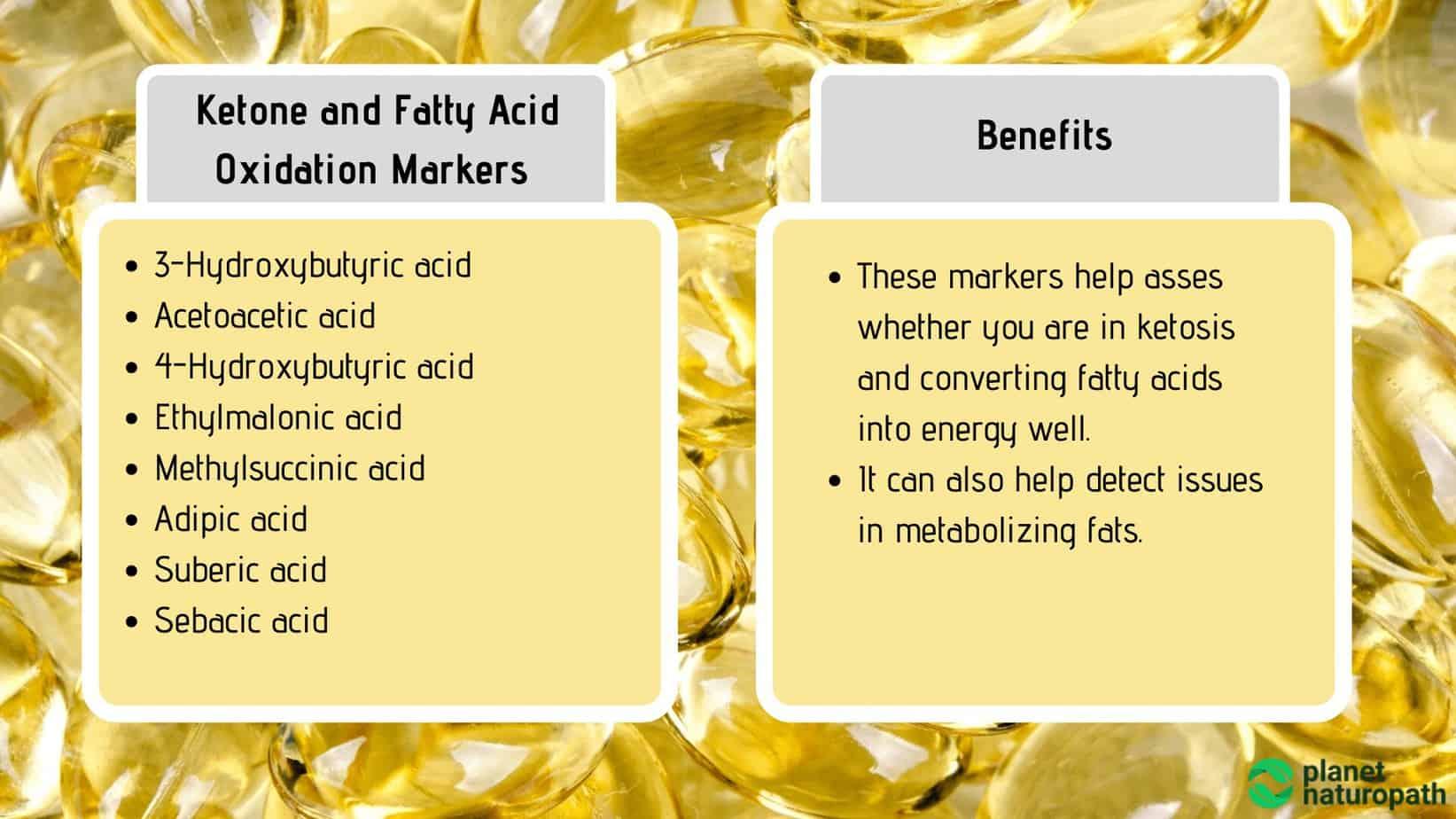 Ketone-and-Fatty-Acid-Oxidation-Markers