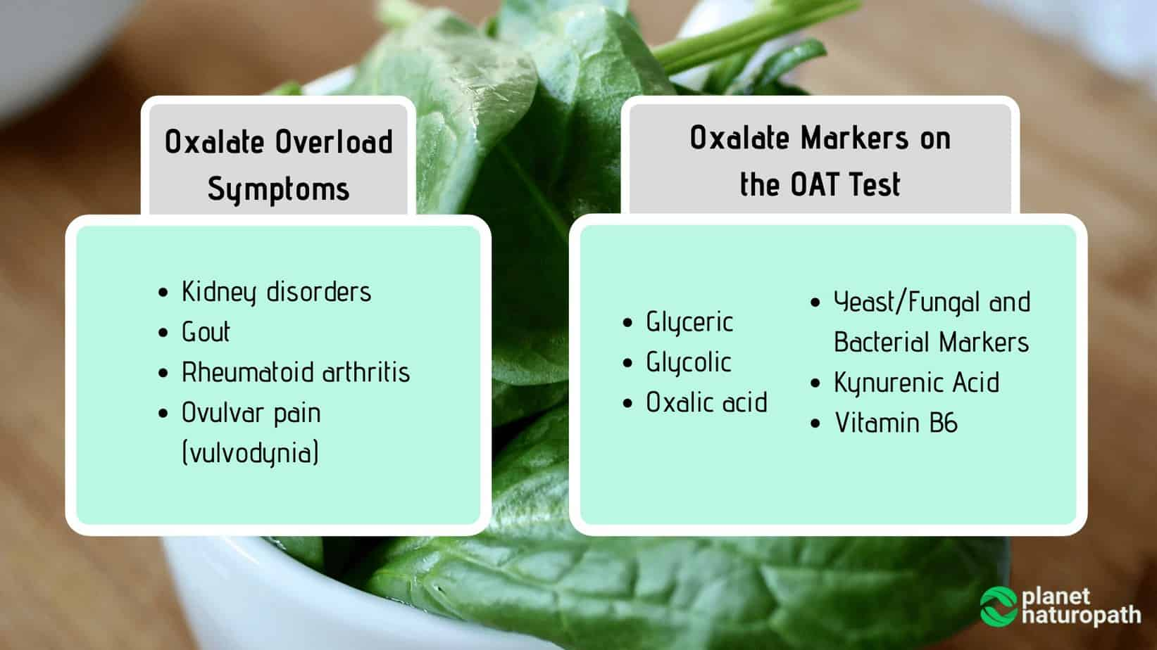 Oxalate-Markers-on-the-OAT-Test.