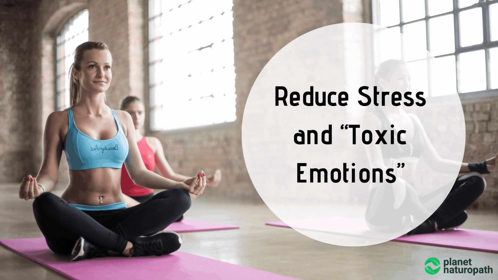 Reduce-Stress-and-Toxic-Emotions