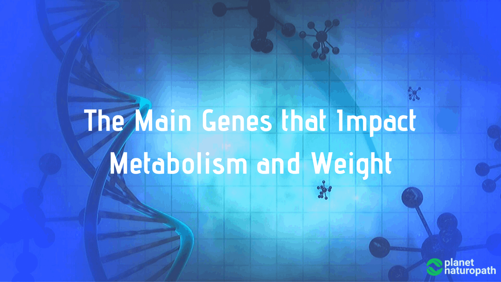 The-Main-Genes-that-Impact-Metabolism-and-Weight