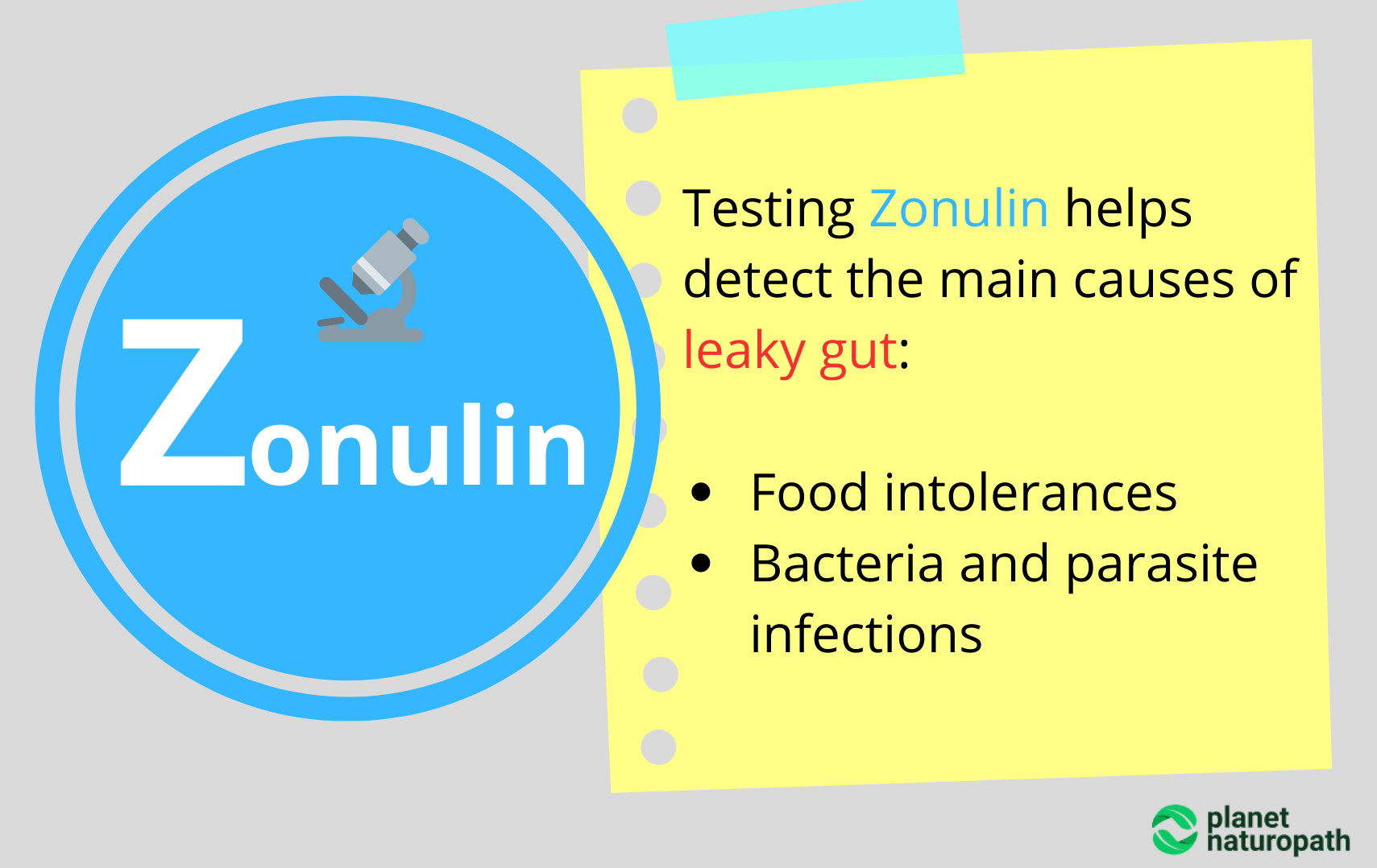 Testing Zonulin helps detect the main causes of leaky gut