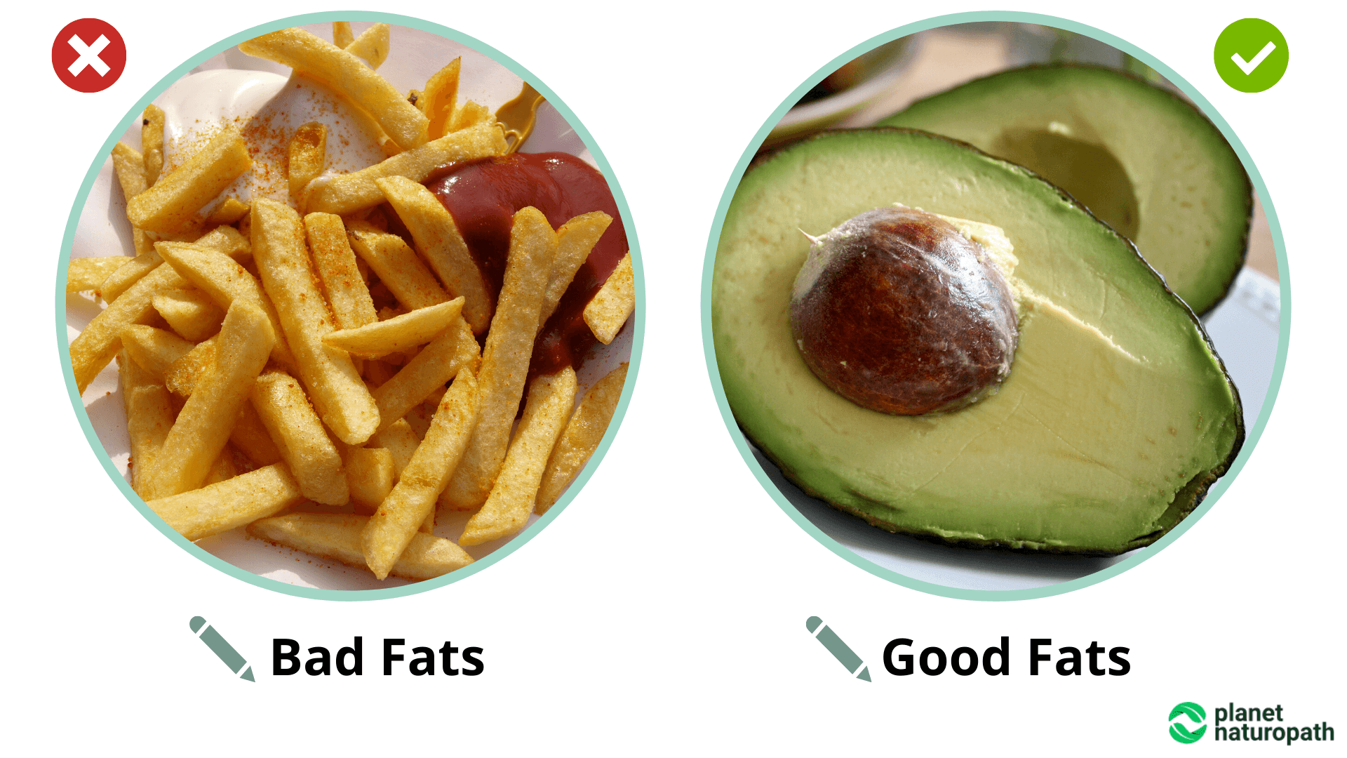 Bad-Fats-vs-Good-Fats