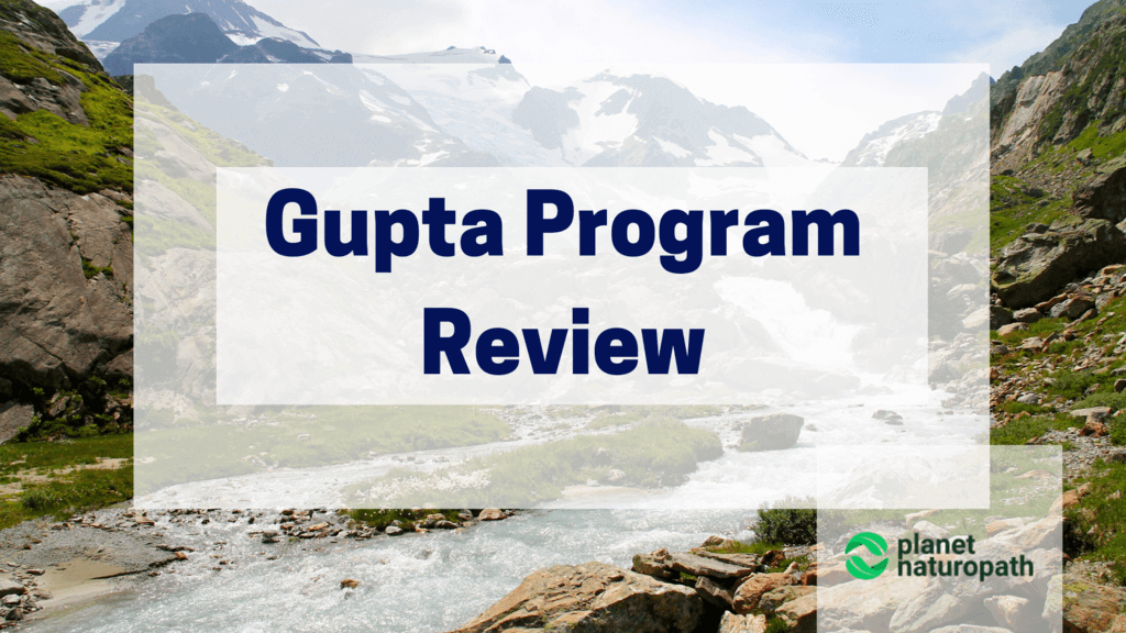 Gupta-Program-Review