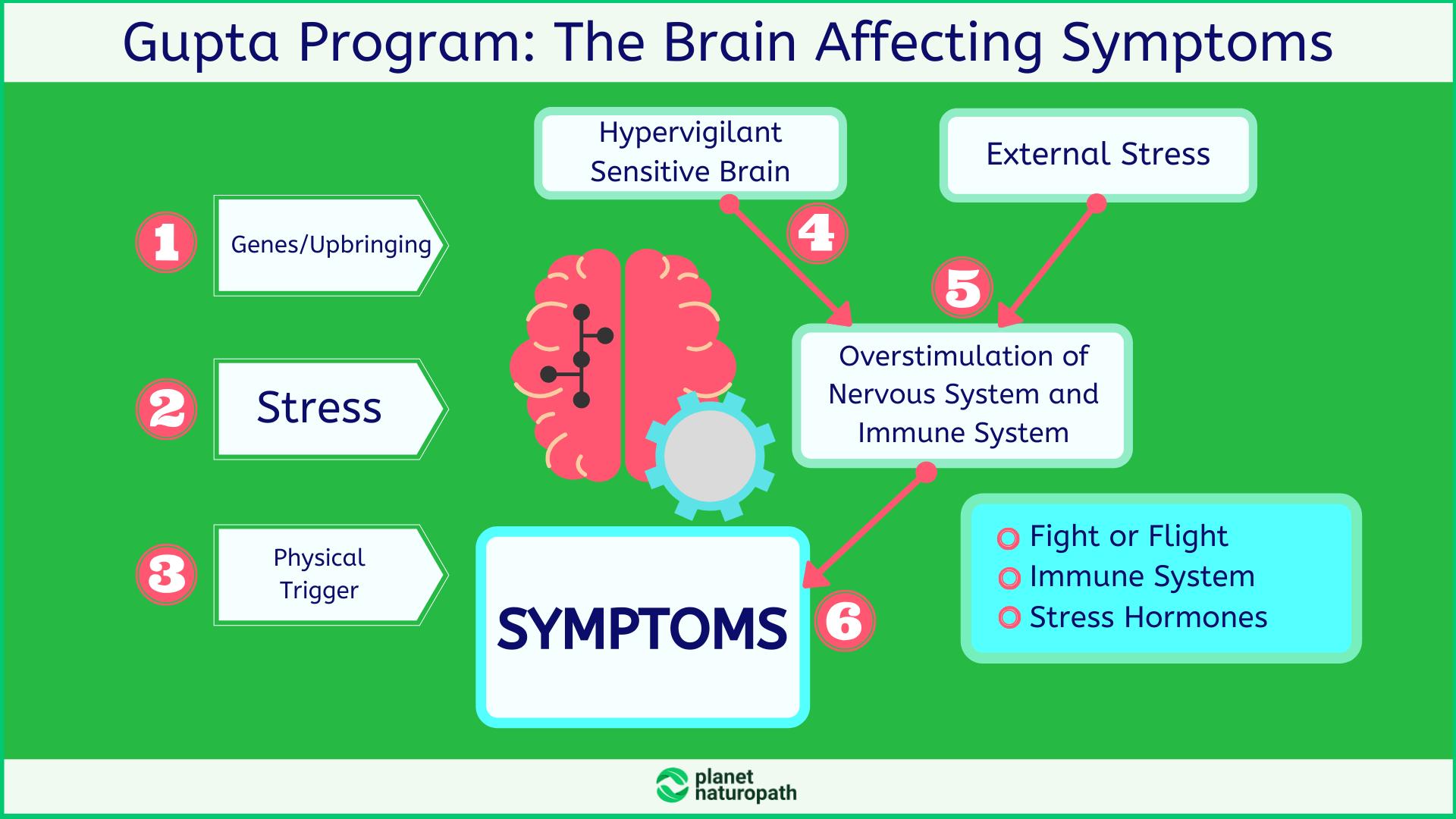 Gupta-Program_-The-Brain-Affecting-Symptoms
