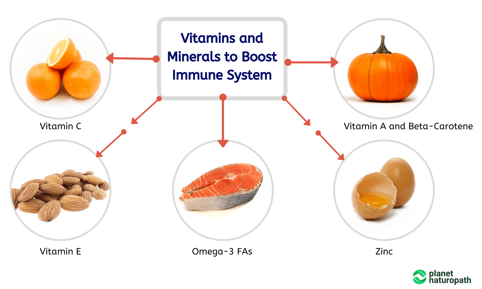 Vitamins-and-Minerals-to-Boost-Immune-System