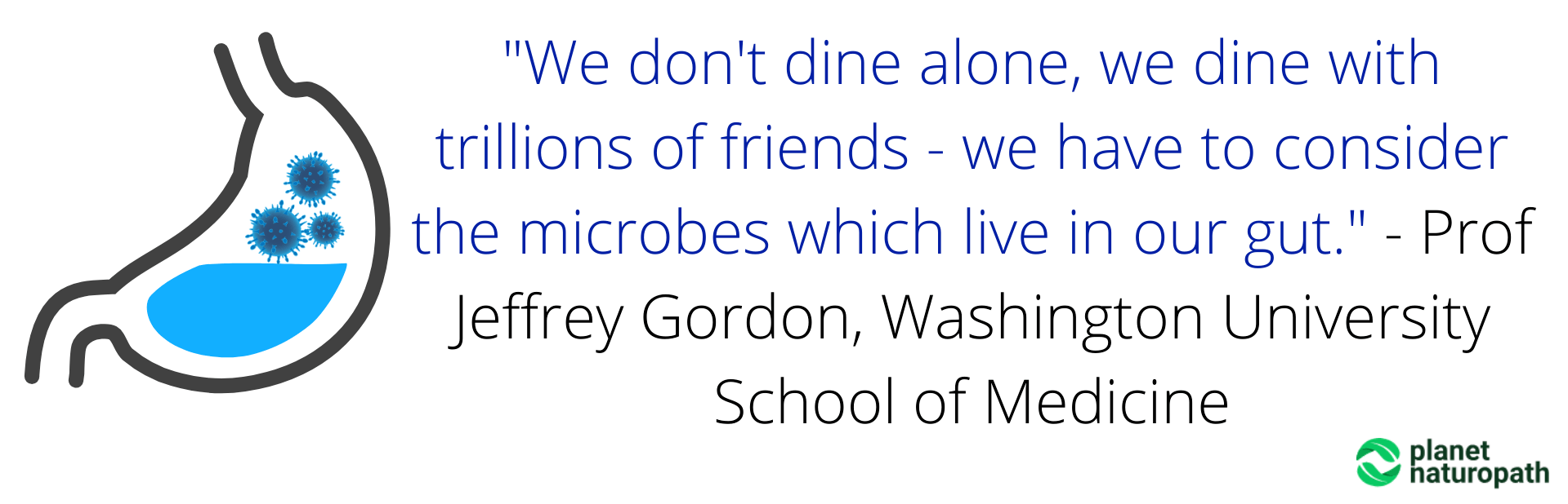 We-dont-dine-alone-we-dine-with-trillions-of-friends-we-have-to-consider-the-microbes-which-live-in-our-gut