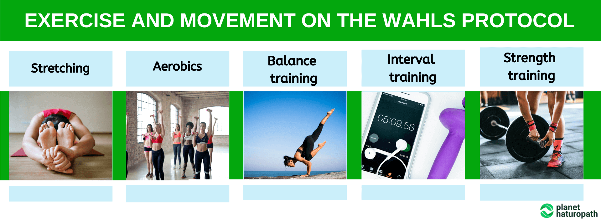Exercise-and-Movement-on-the-Wahls-Protocol