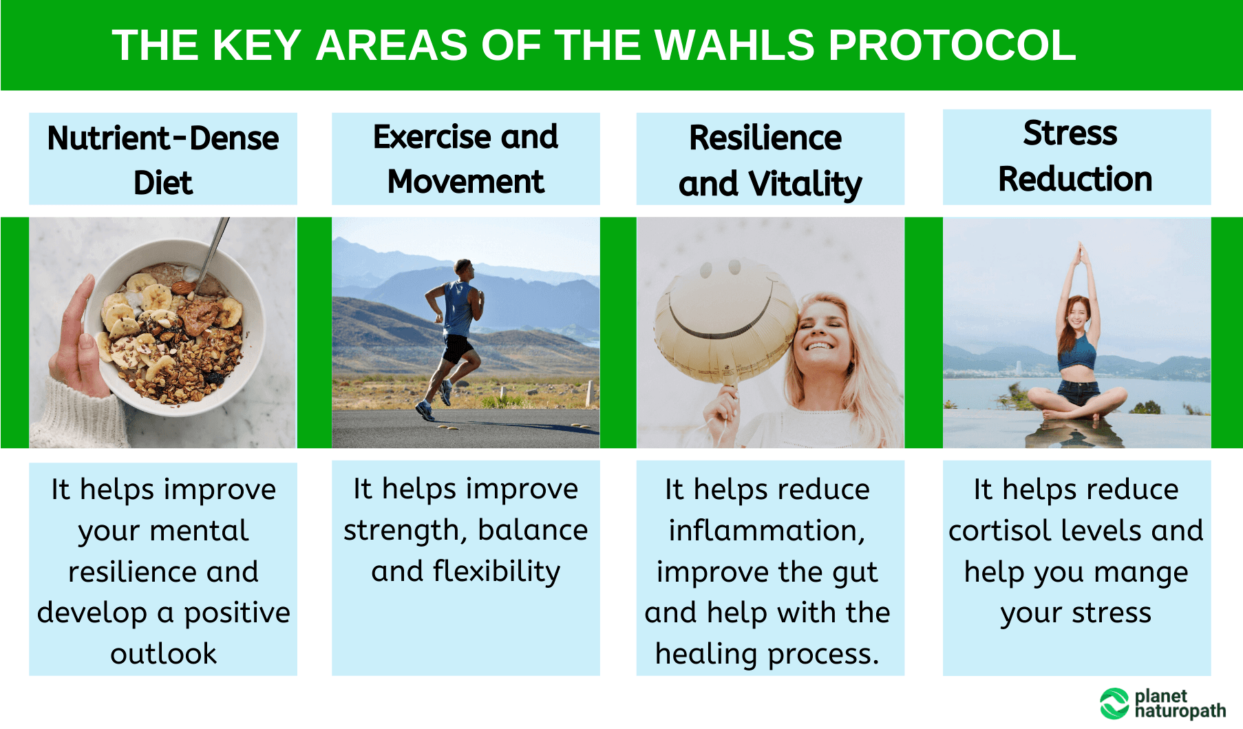 The-Key-Areas-of-the-Wahls-Protocol