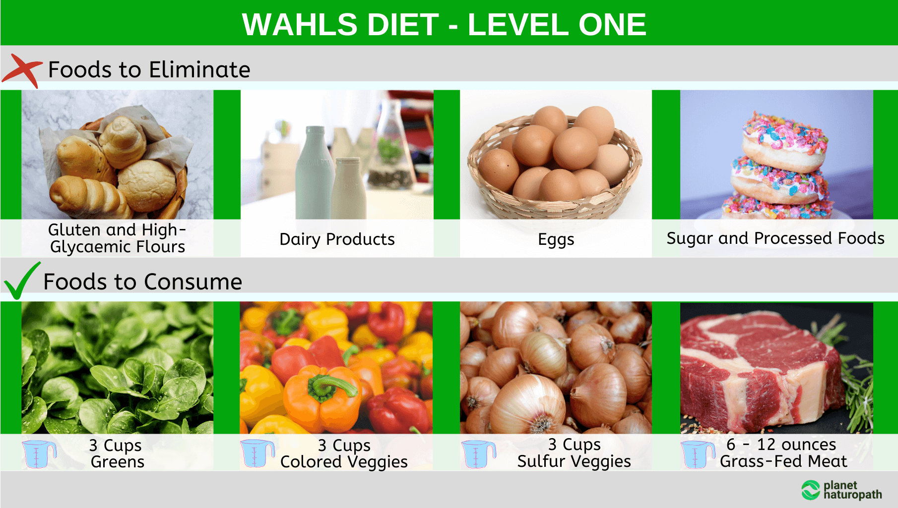 Wahls-Diet-Level-One