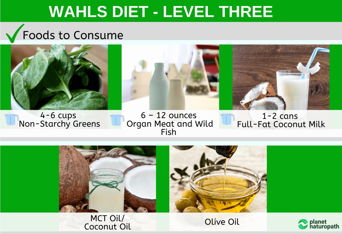 Wahls-Diet-Level-Three