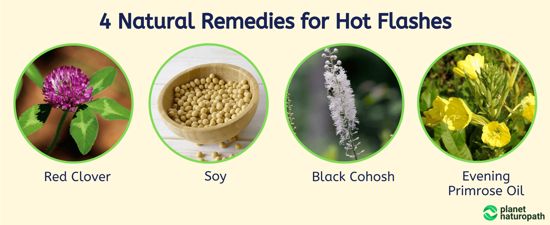 4-Natural-Remedies-for-Hot-Flashes
