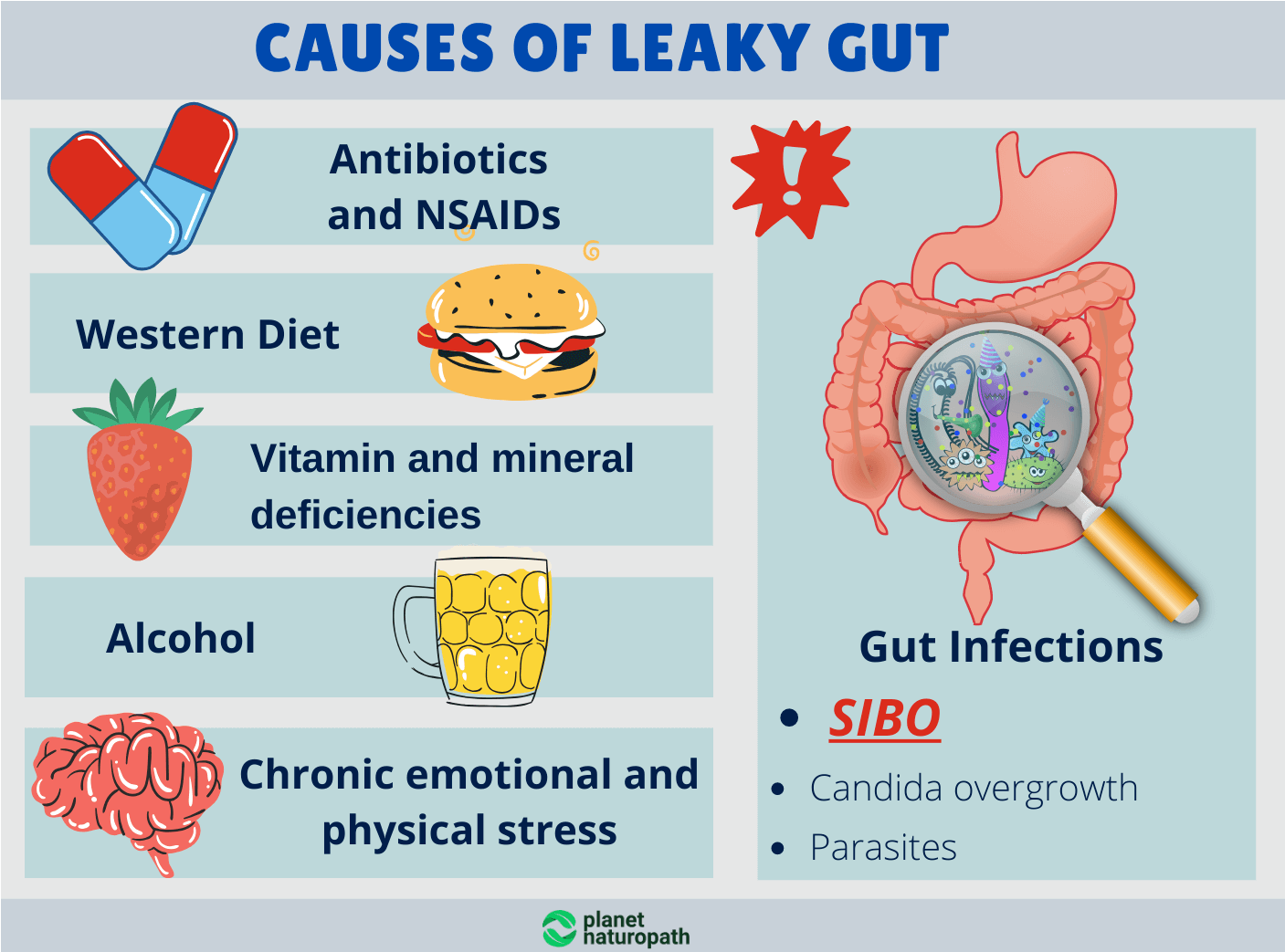Causes-of-Leaky-Gut