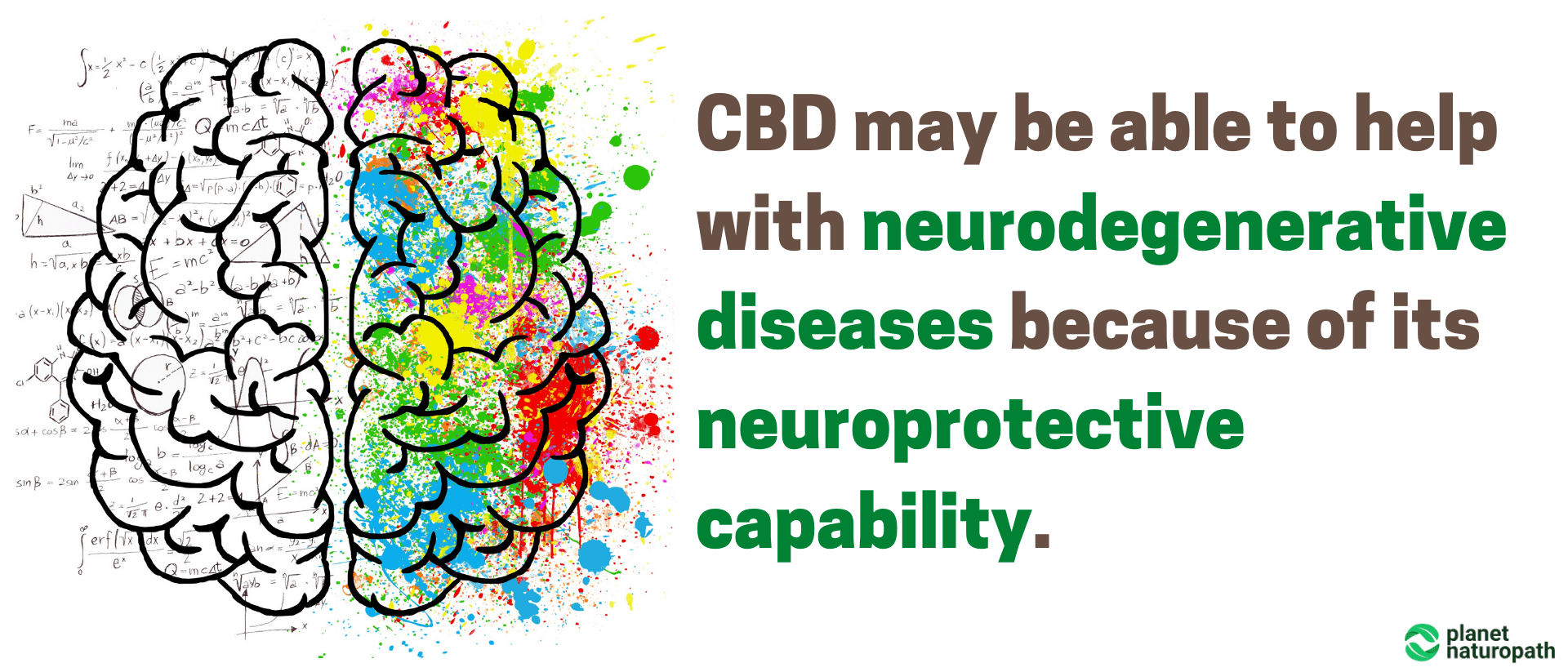 CBD-may-be-able-to-help-with-neurodegenerative-diseases