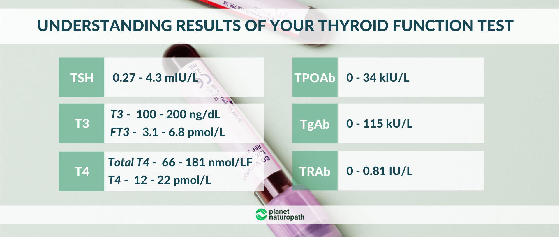 Understanding-results-of-your-thyroid-function-test
