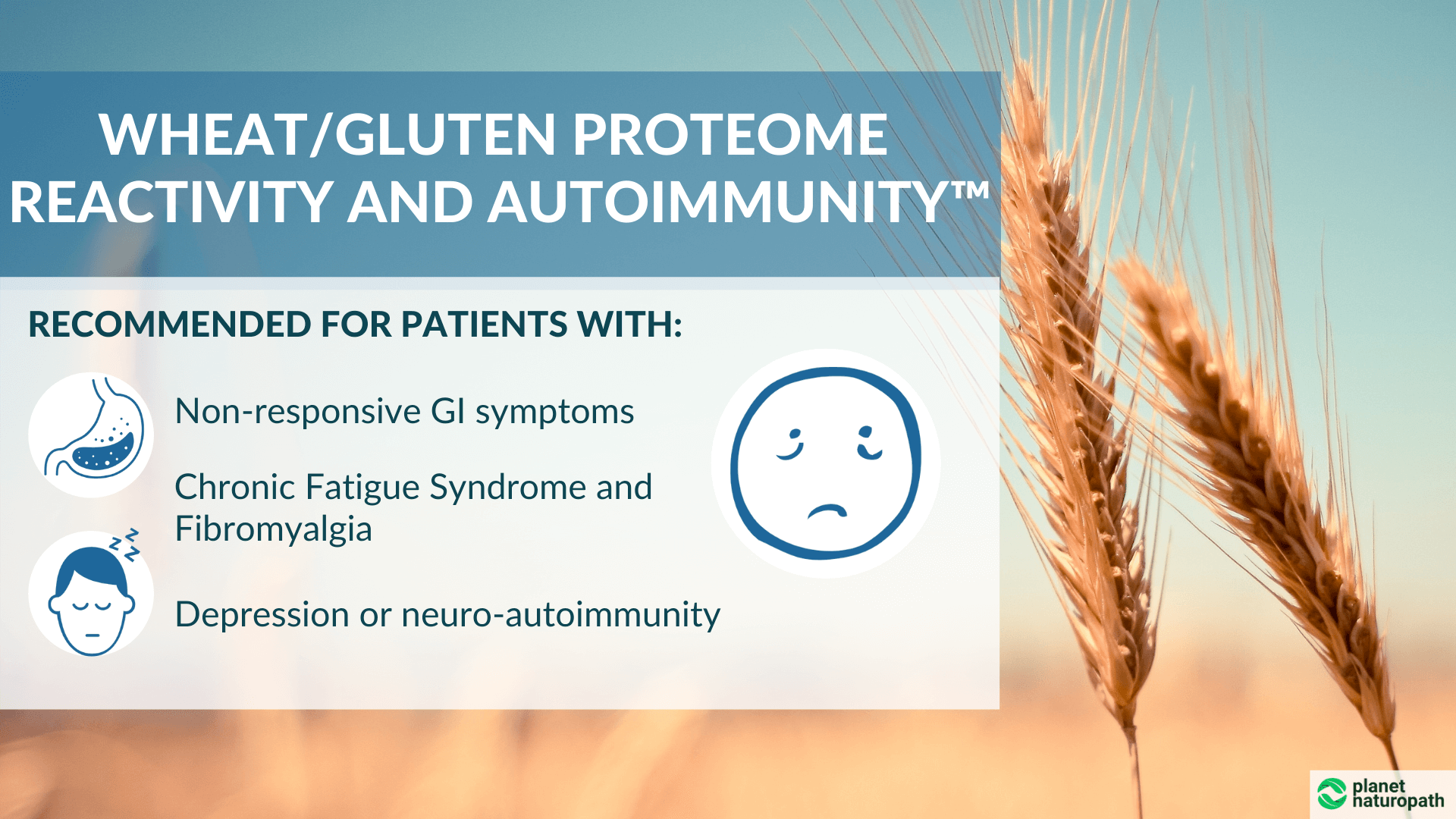 Wheat_Gluten-Proteome-Reactivity-And-Autoimmunity™