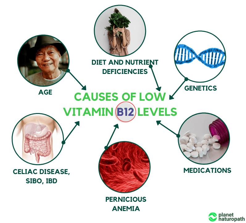 how to treat vitamin B12 deficiency