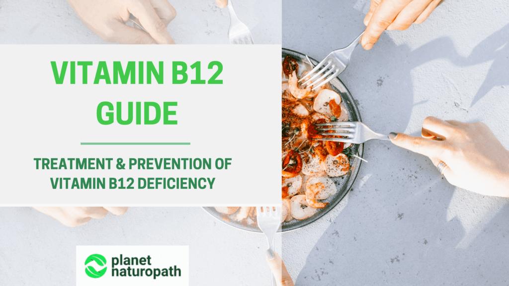 Vitamin-B12-Guide