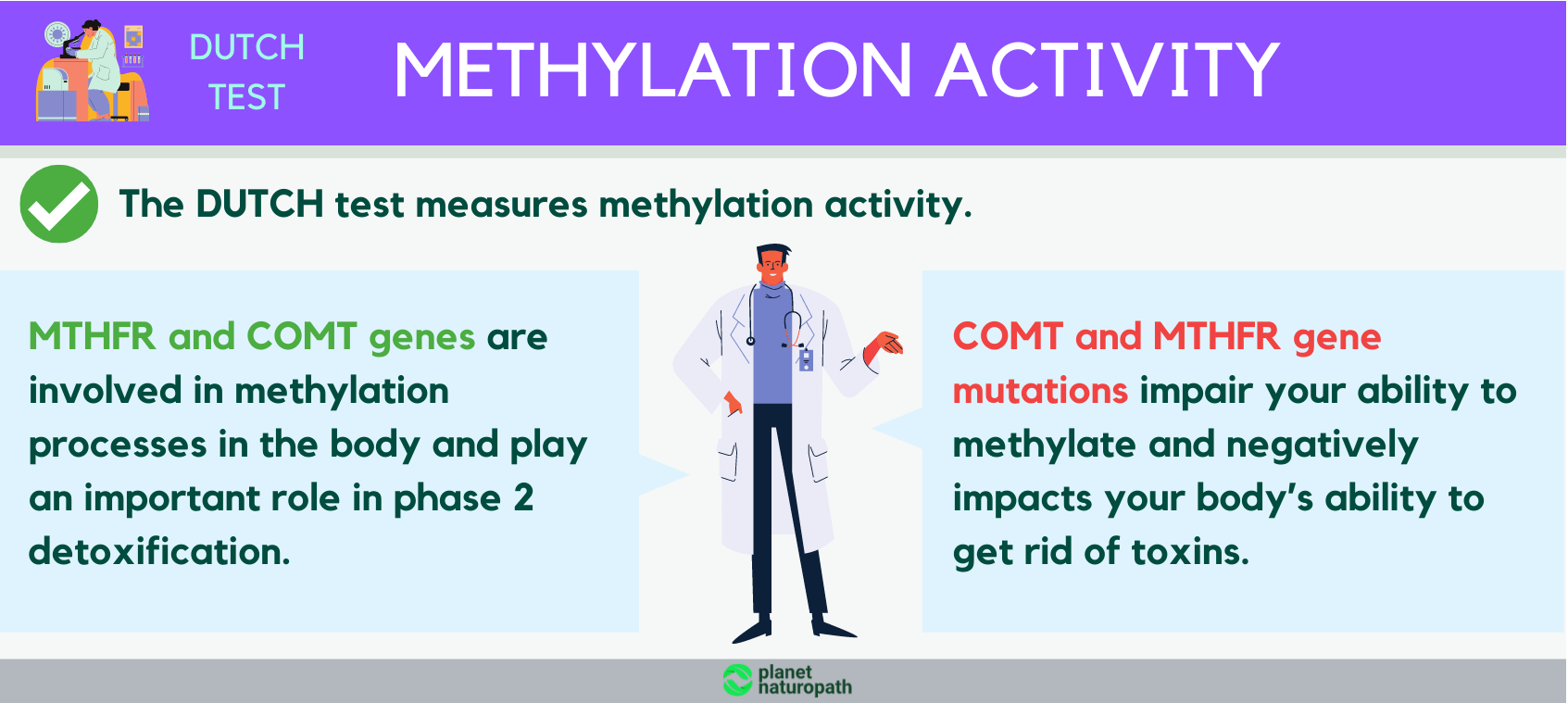 Methylation-activity