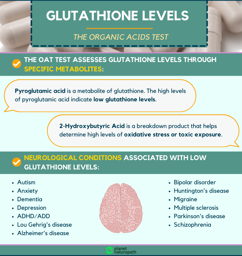 the-OAT-test-Glutathione-levels